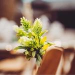 Bouquet fleur des champs présentation