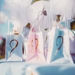 6 sacs cadeaux Gender Reveal Fille ou Garçon3
