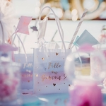 6 sacs cadeaux Gender Reveal Fille ou Garçon2