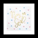 20 Serviettes Boy Or Girl