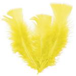 plume-jaune1