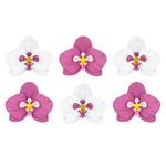 decor-papier-fleurs-tropicales