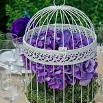Urne mariage cage