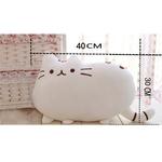 40-30cm-Kawaii-chat-oreiller-avec-fermeture-clair-seulement-la-peau-sans-PP-coton-Biscuits-Peluche