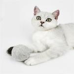Jouets-en-laine-Pure-en-forme-de-chat-Jouets-addictifs-en-boule-de-chat-comestible-s