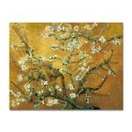 galeTableau reproduction Vincent Van Gogh Amandier en fleursrie glacis