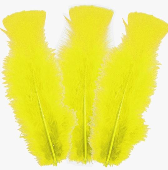 10 plumes Jaunes 5 à 10 cm