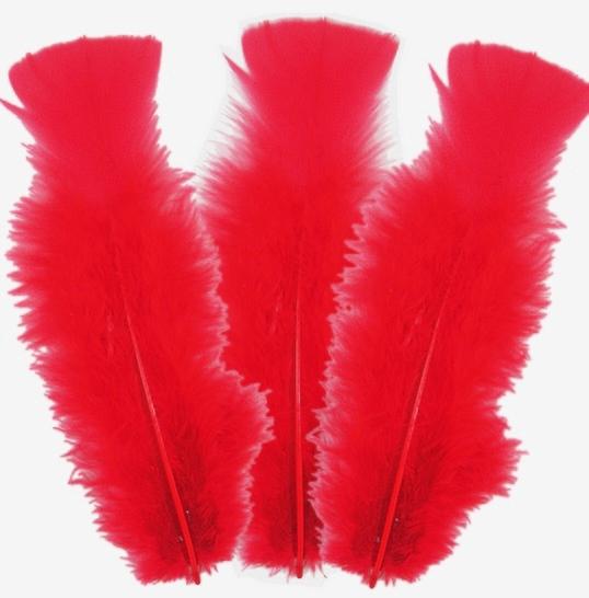 10 plumes Rouges 5 à 10 cm