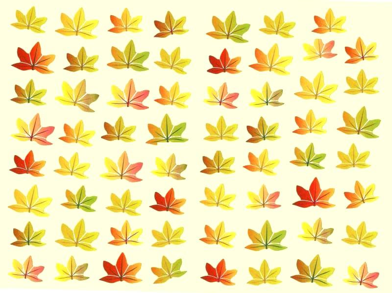 Gommettes Feuilles D\'automne 20x15cm