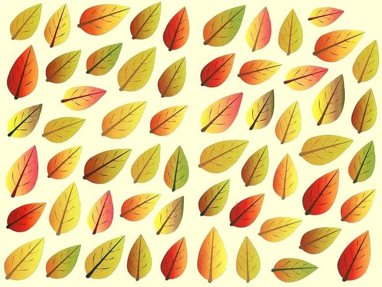 58 feuilles d\'automne