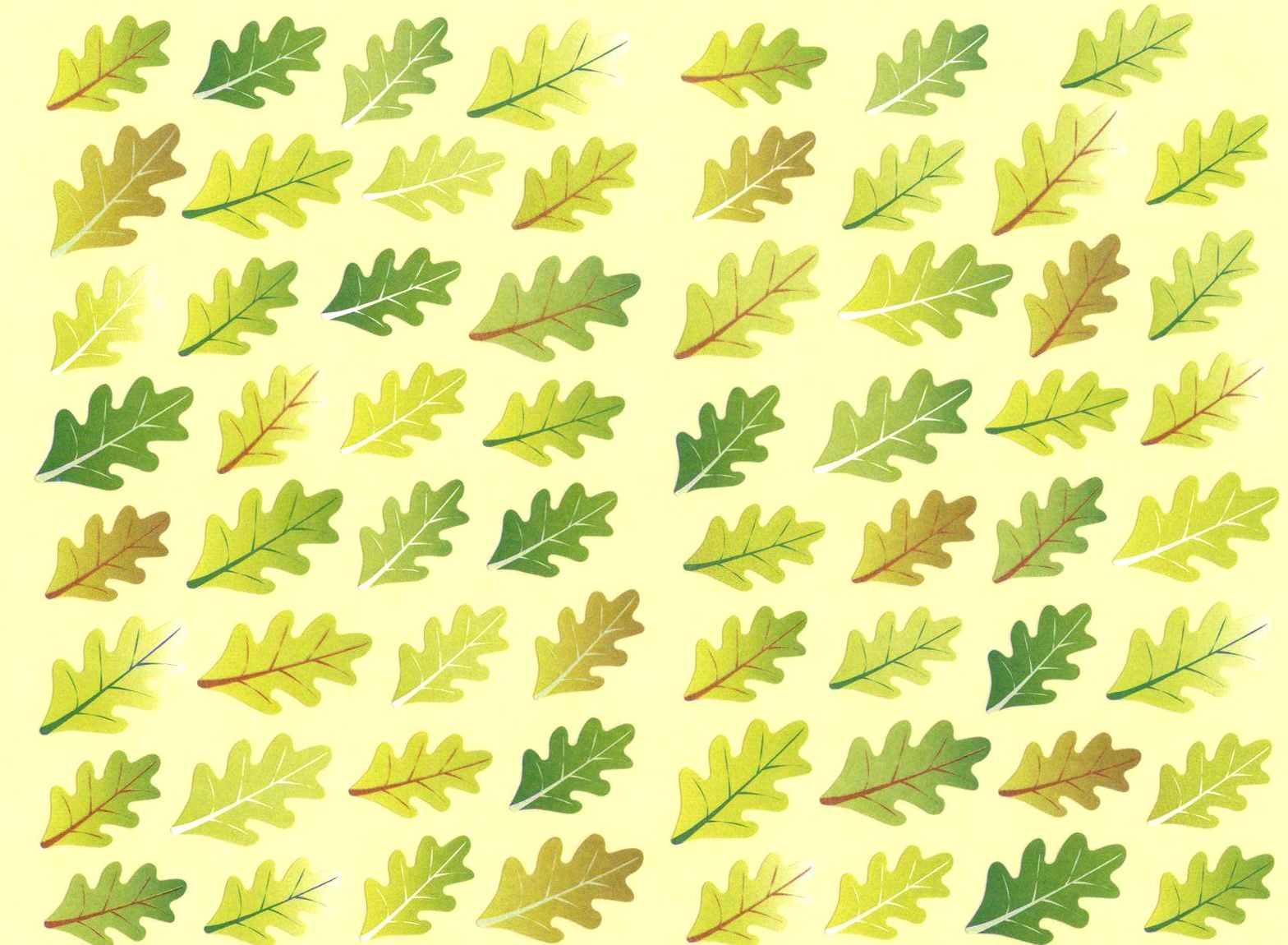 gommettes feuilles verte arbre