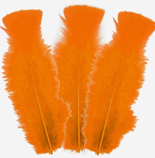 10 plumes oranges 5 à 10cm