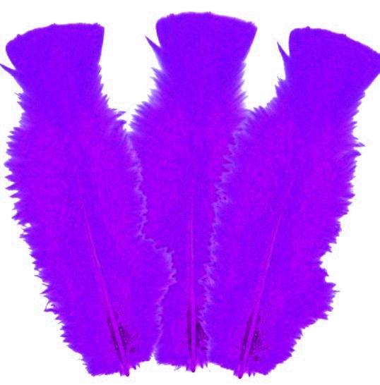 10 plumes Violettes 5 à 10 cm