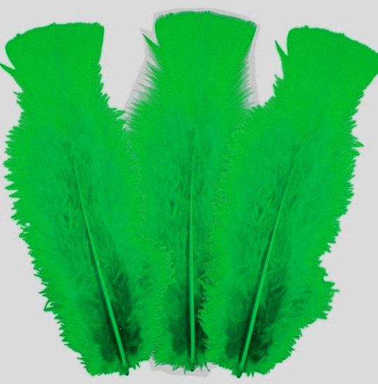 10 plumes Vert foncé 5 à 10 cm
