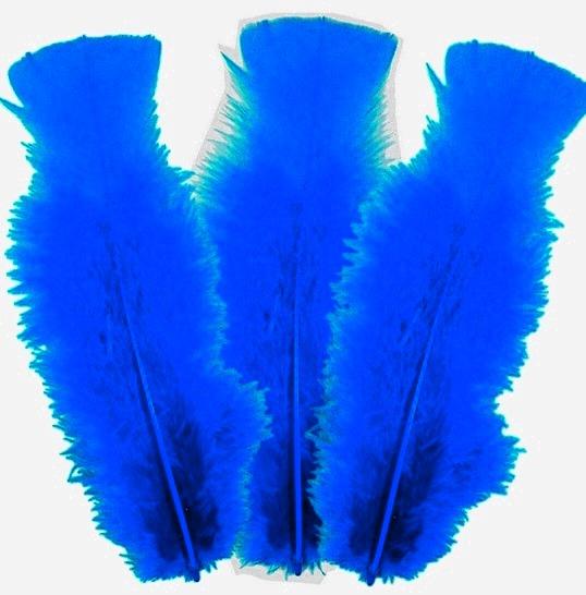 10 plumes Bleu moyen 5 à 10 cm