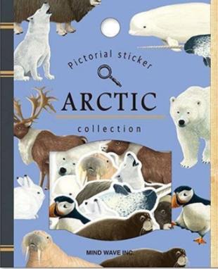 30 Animaux de l'Arctique