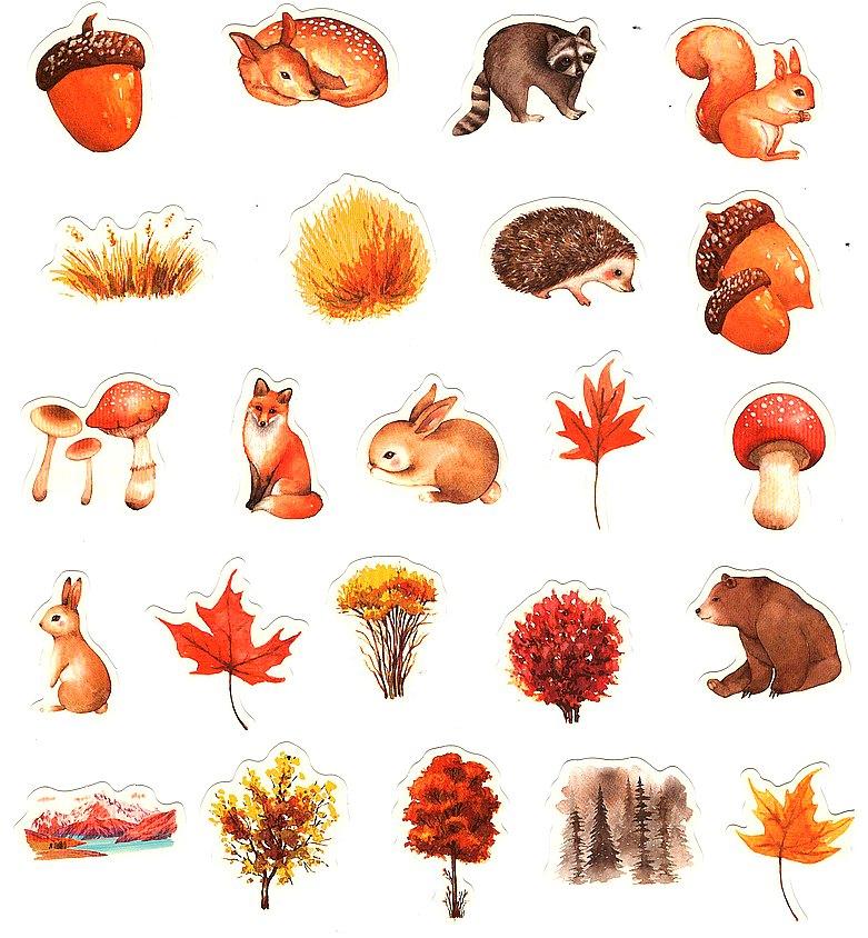 Boite de 46 Stickers de la Faune et la Flore des Forêts en automne