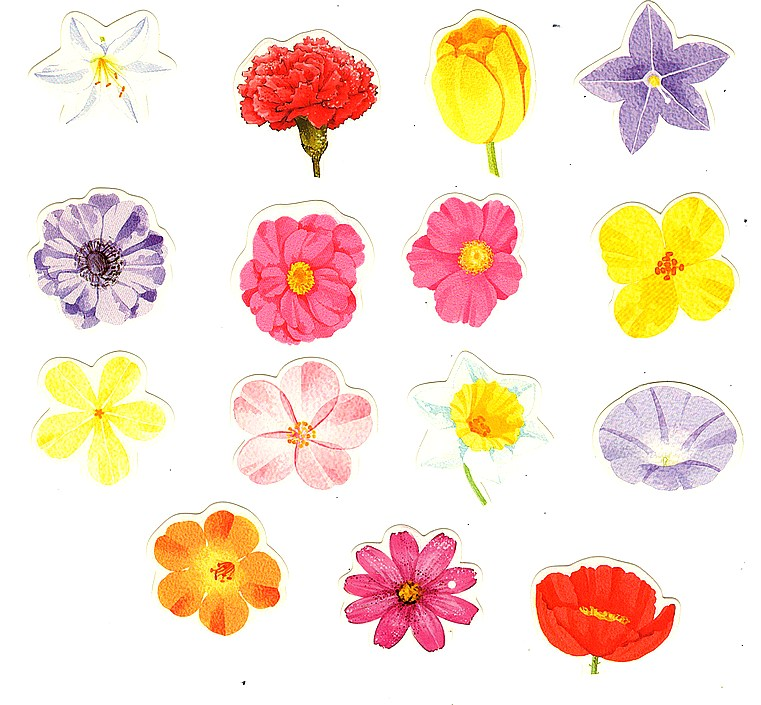 45 Stickers fleurs variées