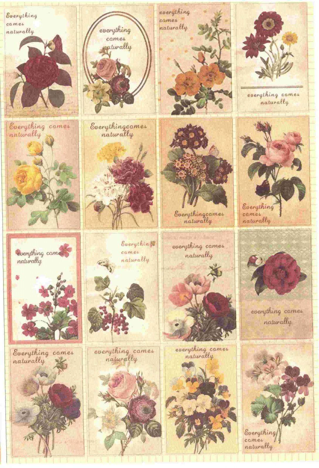 Gommette de scrapbooking Fleurs Vintage. Chargement du zoom