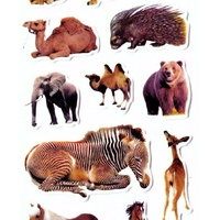 stickers animaux porc epic jf1198