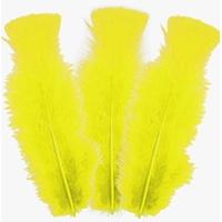 10 plumes d'oies 5 à 10cm: JAUNE