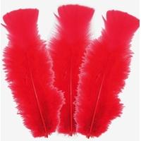 10 plumes d'oies 5 à 10cm ROUGE