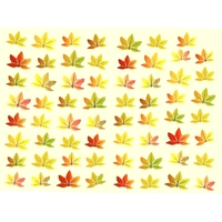 Gommettes Feuilles D'automne 20x15cm