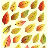 58 gommettes feuilles d'automne detail
