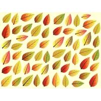 58 feuilles d'automne