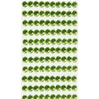 120 strass autocollant vert clair