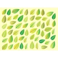 Gommettes feuilles d'arbre