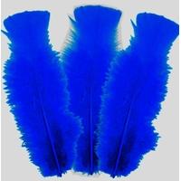 10 plumes de 5cm à 10cm Bleu Roi