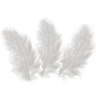 10 plumes d'oies blanches 5 à 10cm