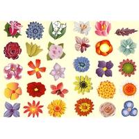 30 grosses Gommettes Fleurs