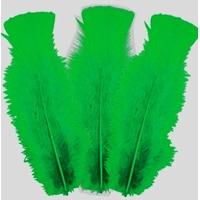 10 plumes 5 à 10 cm vert foncé