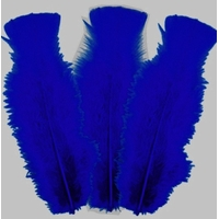 10 plumes bleu foncé