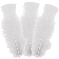10 plumes Blanches 5 à 10 cm