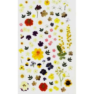 gommettes petites fleurs séchées