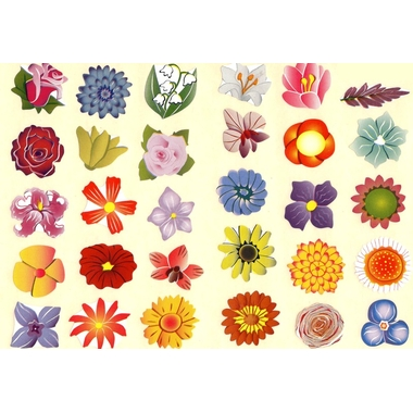 Belles gommettes fleur