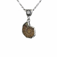 Pendentif Ammonite & argent 925, modèle au choix, photos contractuelles