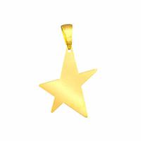 Pendentif étoile en vermeil + gravure, photo (+braille), 4cm
