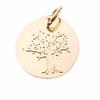 Pd-arbre-de-vie-Vermeil-076610-T-H-800p