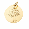 Pd-arbre-de-vie-876610-T-900p
