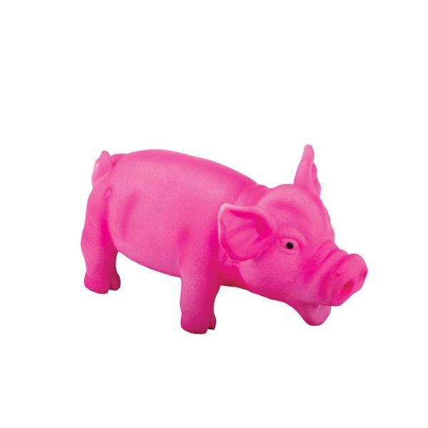 cochon-latex