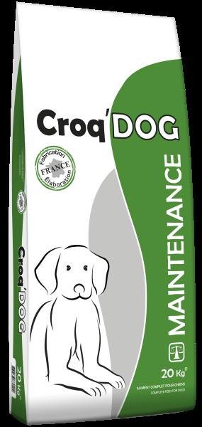 CROQ'DOG - MAINTENANCE (3D)