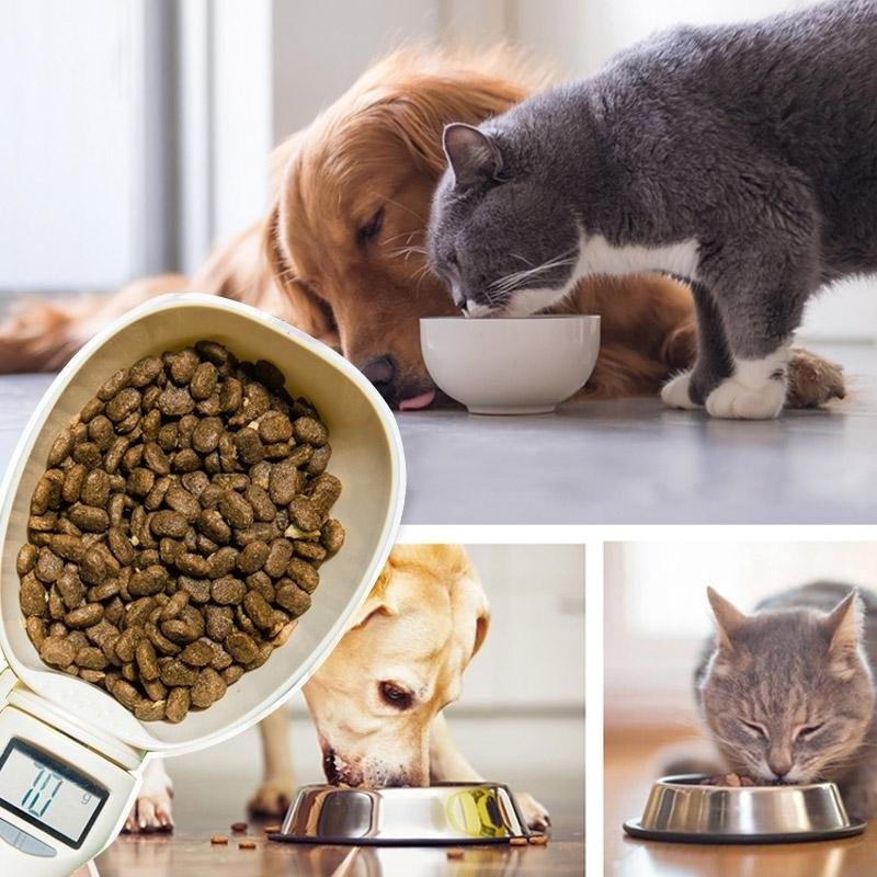 Cuill-re-mesurer-de-nourriture-pour-animaux-Tasse-d-eau-pour-aliments-pour-animaux-de-compagnie