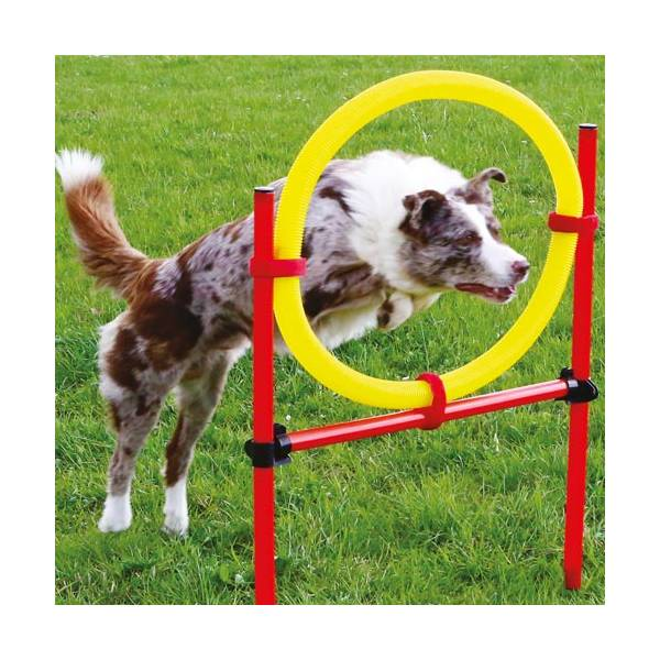 kit-complet-agility-3-obstacles