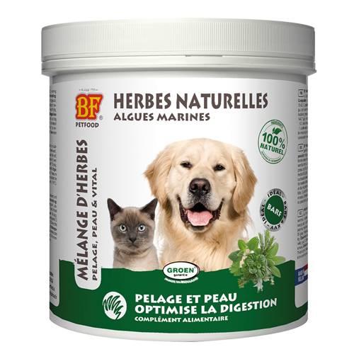 herbes-naturelles-pour-chien-et-chat-biofood
