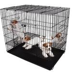 cage-d-exposition-pour-chiots (4)