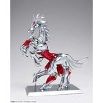 Figurine-Saint-Seiya-les-chevaliers-du-zodiaque-Myth-cloth-Ex-Hagen-Beta-4-z